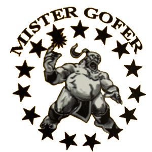Mister Gofer